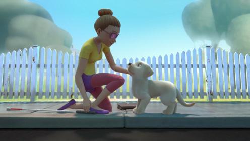狗狗想成为导盲犬,却没能通过测试,靠自己的勇气得到了认可!