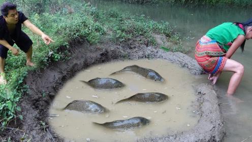 农村夫妻挖陷阱捕鱼,不一会儿就有成群鱼上钩,烤着吃的渣都不剩