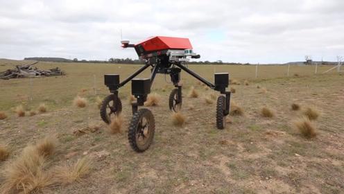 全地形多功能农场机器人,养牛喂草,锄地运输都不在话下!
