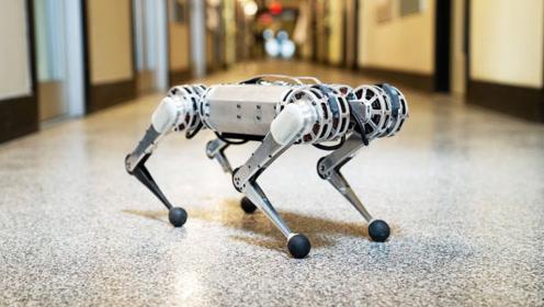 老外发明超牛猎豹机器人,只有20磅重,还能做后空翻!