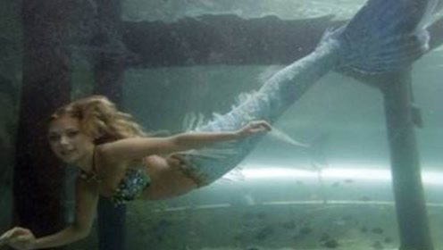 """美国的水族馆,养了一条""""美人鱼"""",吸引成批游客来欣赏"""