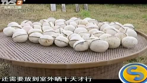 中秋传统:清远柚子果合茶