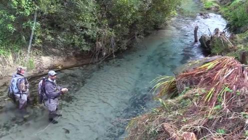 山间小溪的大鱼清晰可见,刚抛出去就有大鱼吃钩,太快了