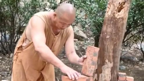不愧是少林寺出来的,这身手真不赖,真是开眼界了