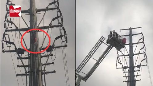 海南一男子情绪激动,攀爬电线杆近2小时:无儿无女又无钱看病