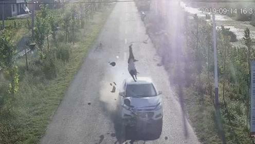 男子醉驾撞飞电瓶车,骑车女子不幸身亡,肇事者已被刑拘