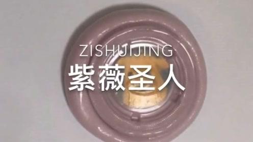 治愈系来袭:紫薇起泡胶