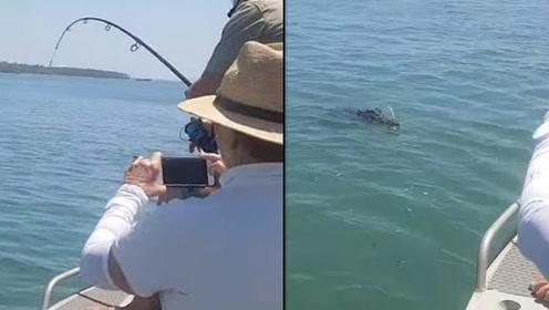 渔夫以为钓到了大鱼开心收竿 没想到下一秒出现的竟是一只大怪物