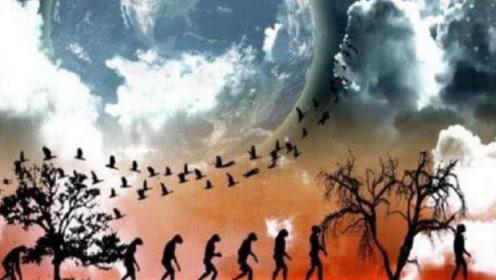 人类也许不是猿猴进化而来?有人提出:也许是外来生物!