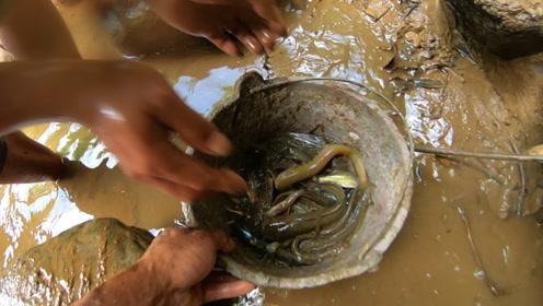 10多年未被干过水的溪坑,抽干水发现野货不简单,把小伙乐坏了