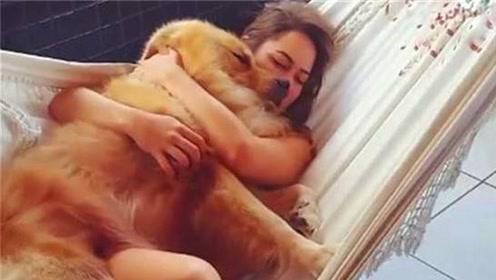 如果天天抱着狗睡觉,会出现什么不好的情况?看完不淡定了