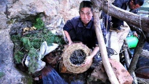 你见过上山打渔吗?村民拿竹篓上山每次都满载而归,怎么回事?