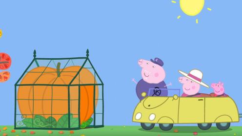 小猪佩奇把土豆茄子辣椒西红柿全都放在锅里炖 很好吃 玩具故事