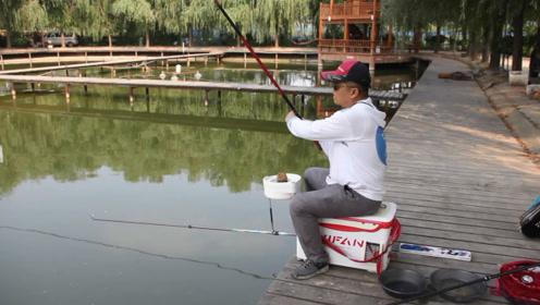 钓鱼老手野钓时,是如何轻松把大鱼遛上岸的?全套技巧今天教给你