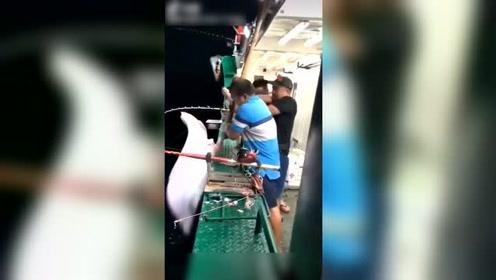 海钓的装备这贵,这个电绞轮好几万,就这样被鱼拉跑了!
