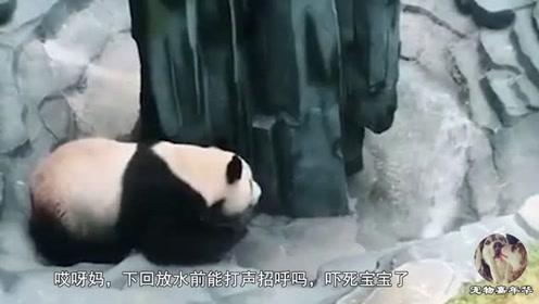 大熊猫:兄弟!下次放水能提前打声招呼不?看给老子吓的!
