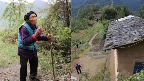 大山上的石板房里住着百岁奶奶,能走山路,还养猪养鸡