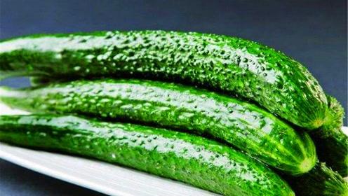 吃不完的黄瓜怎么办?教你一窍门不用放冰箱,保存一周都是翠绿