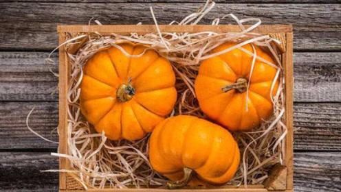秋季常吃南瓜,润秋燥健脾胃