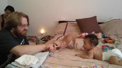 自从有了小主人,家里的狗子简直寸步不离,想碰宝宝,咬你没商量