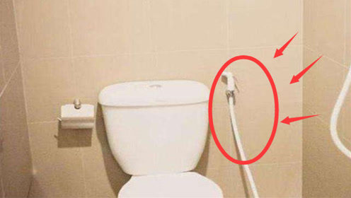 泰国卫生间里的软管有什么用?服务员说出实情,女游客听完脸都红了!