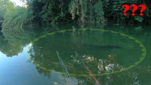 钓鱼:水里出现了巨大黑影