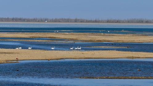 中国又一逆天工程!25万人在沙漠挖出10个西湖,沙漠变绿洲