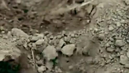 """内蒙古老人挖出""""龙骨"""",战国古墓重现,专家:埋藏着匈奴王宝藏"""