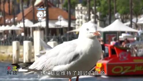 日媒:世界太依赖中国,这两个国家几乎离不开中国