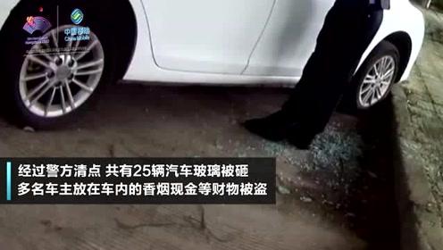 男子盗窃车内财物 狂砸25辆车