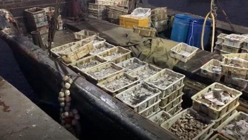大胖家的渔船凌晨四点靠岸,20多种海货有上百箱,一车拉不了