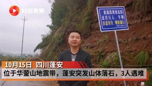 蓬安山体意外落石3人遇难 奶奶接孙女放学被砸中
