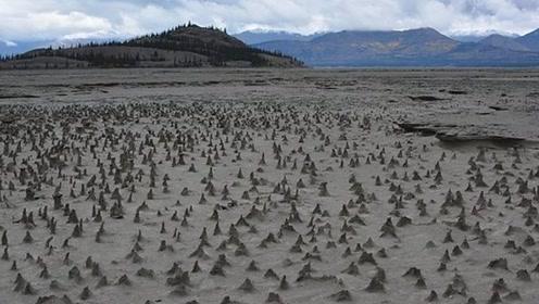 加拿大300多年的河流,4天内突然消失,科学家不淡定了