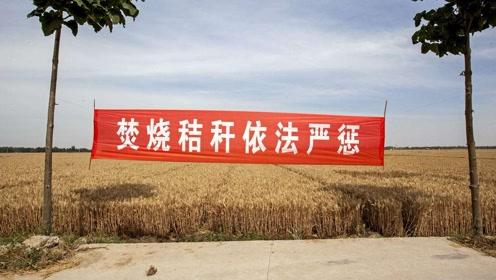 农民是如何看待秸秆禁烧新政策的?