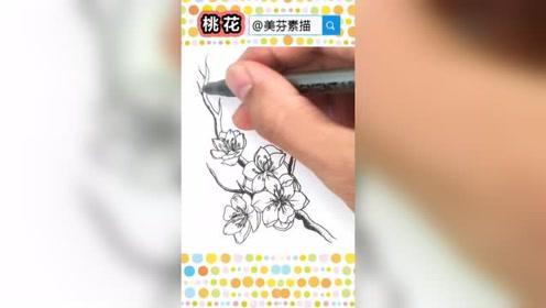 速写桃花的画法步骤介绍!教你画漂亮的桃花朵朵开插画手绘!