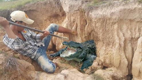 """男子野外发现""""秘密""""洞口,挖开的一瞬间,整个人不淡定了!"""