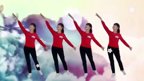 上海伟伟广场舞《千年等一回》团队火爆对跳