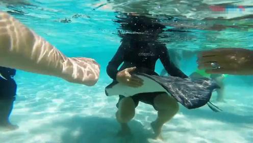 一分钟带你玩遍加勒比海最热闹的海滩 怪鱼在人群中穿梭