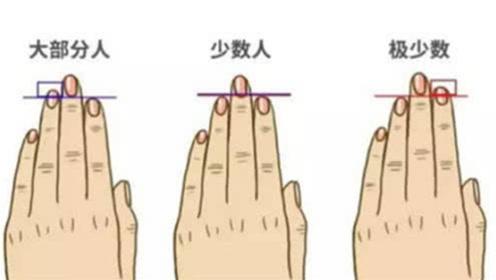 """有点准!从食指和无名指的长短,就能看出你""""富贵""""还是""""贫穷"""""""