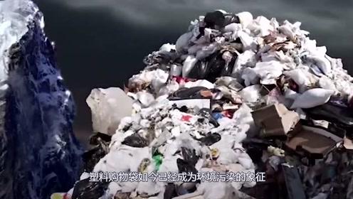 塑料污染严重!塑料袋设计者初衷为挽救地球,人们为何用完就扔?