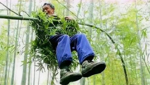 """我国最后一位""""竹海老人"""",70岁还能飞跃在竹海之中,技艺将失传"""