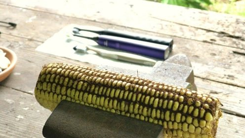 电动牙刷和普通牙刷有什么区别?老外用玉米测试,看完果断换了
