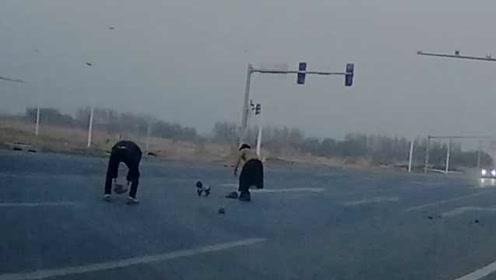 碎石撒路面扎破胎,他们下车一块块搬走,狗狗也来帮忙