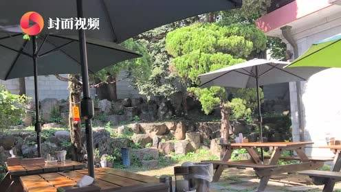 吃叮到了|首尔米其林推荐餐厅 北村百年土种参鸡汤