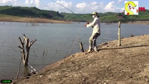 钓竿使劲的被拉动,大叔跑着去收钓,收获这条大鲤鱼真不容易