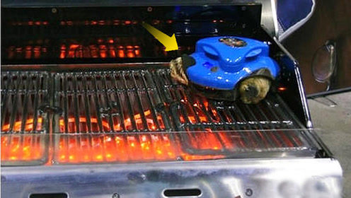 烧烤油烟不用愁,这机器人会清理网面,据说只要600块,买吗