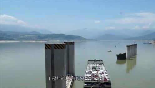 我国三峡曾放生近万条大鱼,现在怎么样了呢?看完让人佩服不已