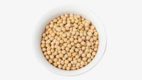 教你用一碗黄豆自己在家做豆腐,方法简单,步骤详细,学会不用买
