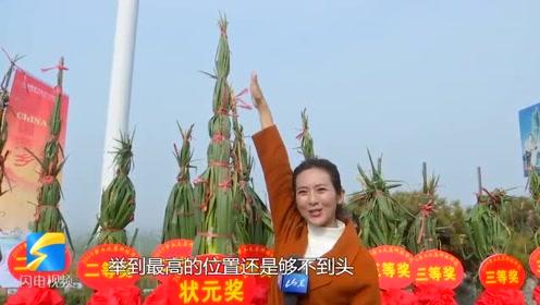 68秒丨章丘大葱又搞事情啦!你见过2.43米高的大葱吗?