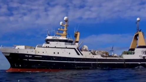"""海上的""""捕鱼巨兽"""",连鲨鱼都在劫难逃,官方:造价4亿"""